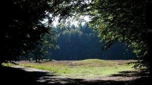 Grafheuvels op Heidehof