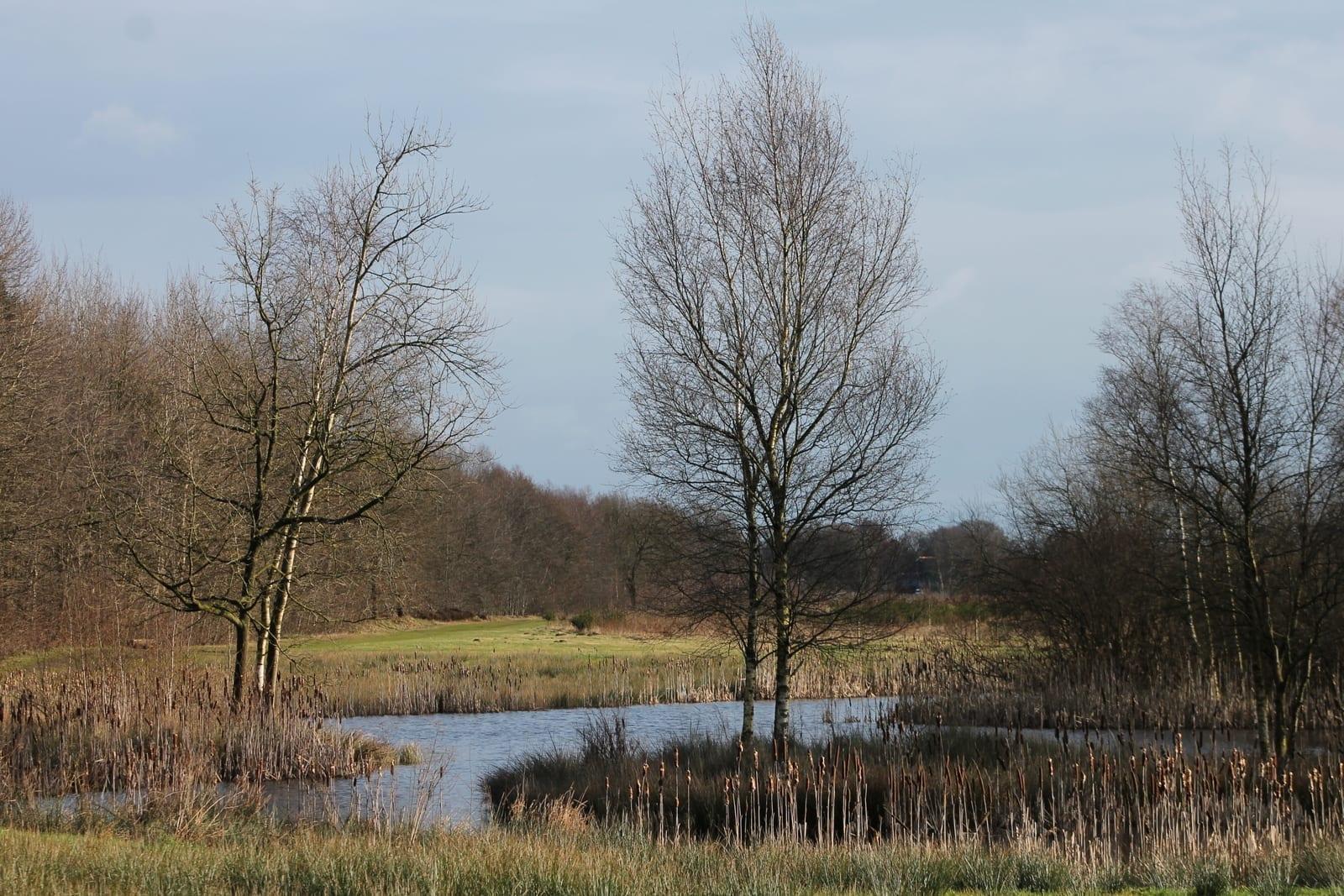 Uitbreiding natuurgebied natuurbegraafplaats hillig meer - Noordelijke deel ...